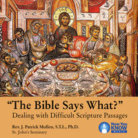 The Bible Says What?: Dealing with Difficult Scripture Passages - Patrick J. Mullen