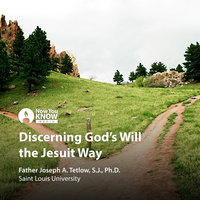 Discerning God's Will the Jesuit Way - Joseph A. Tetlow