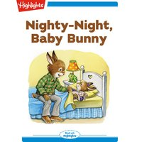 Nighty-Night, Baby Bunny - Eileen Spinelli