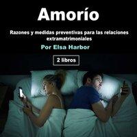 Amorío. Razones y medidas preventivas para las relaciones extramaritales - Elsa Harbor