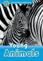 Young Animals - Rachel Bladon