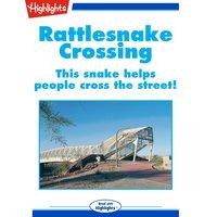 Rattlesnake Crossing - Rene Allen