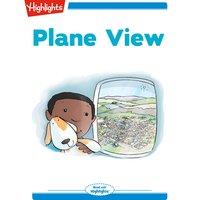 Plane View - Heather Tekavec