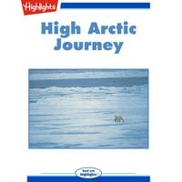 High Arctic Journey - Susan E. Quinlan