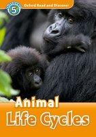 Animal Life Cycles - Rachel Bladon