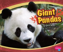 Giant Pandas - Lyn Sirota