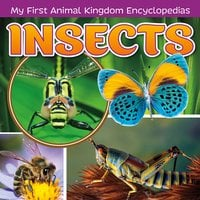 Insects - Janet Riehecky