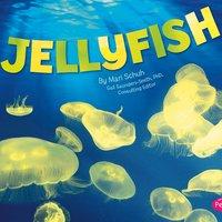 Jellyfish - Mari Schuh