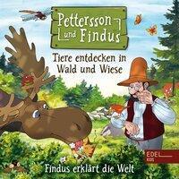 Findus erklärt die Welt: Tiere entdecken in Wald und Wiese - Angela Strunck
