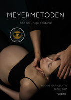 Meyermetoden - Heidi Meyer Vallentin, Eline Holm