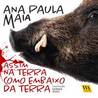 Assim na terra como embaixo da terra - Ana Paula Maia
