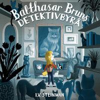 Balthasar Bruns detektivbyrå - Mysteriet med den forsvunne katten - Ina Vassbotn Steinman