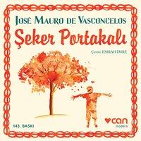 Şeker Portakalı - José Mauro de Vasconcelos
