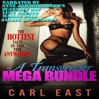 A Transgender Mega Bundle