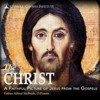 The Christ: A Faithful Picture of Jesus from the Gospels - Alfred McBride