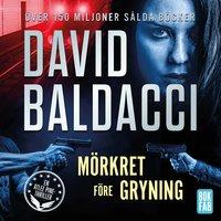 Mörkret före gryning - David Baldacci