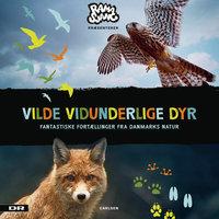 Vilde Vidunderlige Dyr - Fantastiske fortællinger fra Danmarks natur - DR Ramasjang