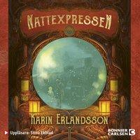 Nattexpressen - Karin Erlandsson