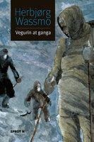 Vegurin at ganga - Herbjørg Wassmo