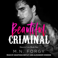 Beautiful Criminal - M.N. Forgy