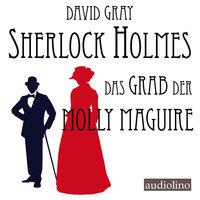 Sherlock Holmes - Eine Studie in Angst, Band 2: Das Grab der Molly Maguire - David Gray
