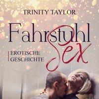 FahrstuhlSex / Erotik Audio Story / Erotisches Hörbuch - Trinity Taylor