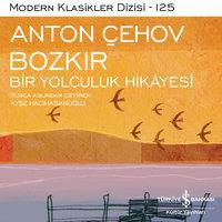 Bozkır - Bir Yolculuk Hikayesi - Anton Çehov