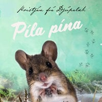 Píla pína - Kristján frá Djúpalæk