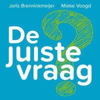 De juiste vraag: De kunst van het vragen stellen in coachende gesprekken - Mieke Voogd, Joris Brenninkmeijer