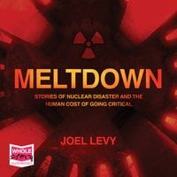 Meltdown: Nuclear disaster and the human cost of going critical - Joel Levy