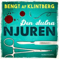 Den stulna njuren : sägner och rykten i vår tid - Bengt af Klintberg