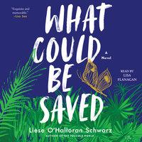 What Could Be Saved: A Novel - Liese O'Halloran Schwarz