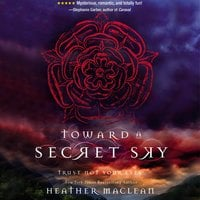 Toward a Secret Sky - Heather Maclean