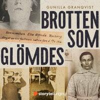 Brotten som glömdes - 10 kvinnliga offer och förövare i 1920-talets Stockholm - Gunilla Granqvist