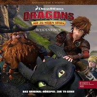 Dragons: Der Verräter / Weidenrinde - Thomas Karallus