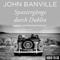 Spaziergänge durch Dublin - John Banville