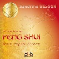 Initiation Au Feng Shui: Notre Capital Chance - SANDRINE BESSON