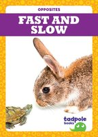 Fast and Slow - Erica Donner