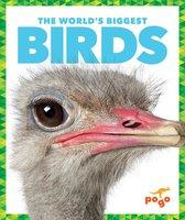 The World's Biggest Birds - Mari Schuh