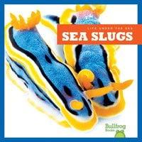 Sea Slugs - Mari Schuh