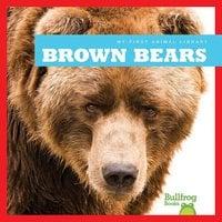 Brown Bears - Cari Meister