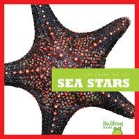 Sea Stars - Cari Meister