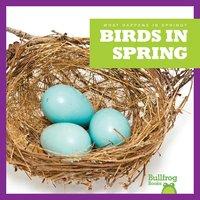 Birds in Spring - Jenny Fretland VanVoorst
