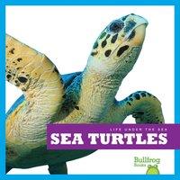 Sea Turtles - Cari Meister