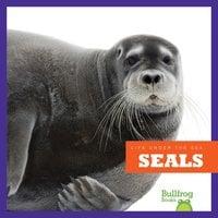Seals - Cari Meister