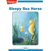 Sleepy Sea Hourse - Heidi Bee Roemer
