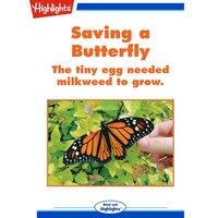 Saving a Butterfly: The tiny egg needed milkweed to grow. - Sara Matson