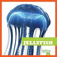 Jellyfish - Cari Meister
