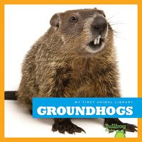 Groundhogs - Cari Meister