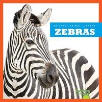 Zebras - Cari Meister